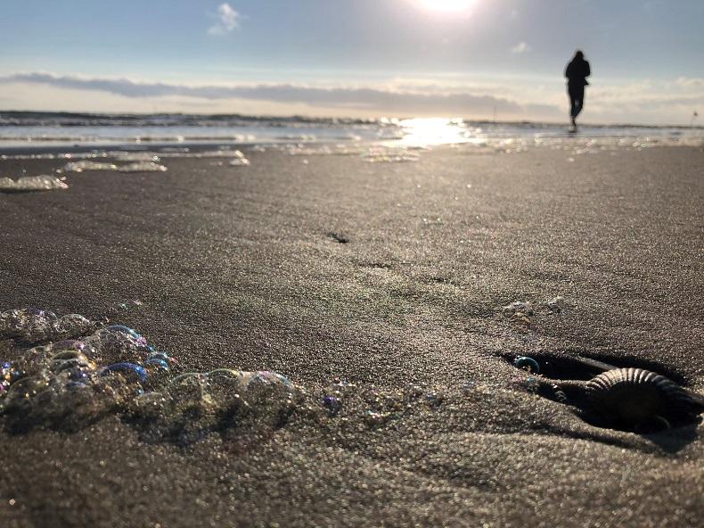 Strand oder Berge? Stadt oder Land? Welches Urlaubsziel wird es werden? Foto: A. Gatz