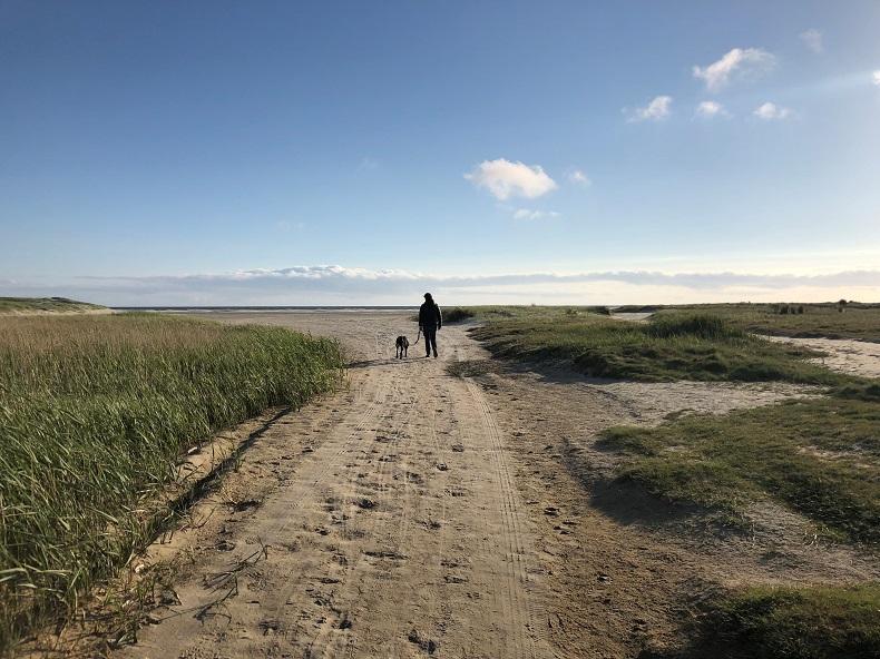 Den Kopf in den Sand stecken oder sich der Herausforderung stellen... Foto: A. Gatz